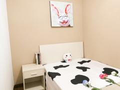 东城国际北区 5居室 C卧
